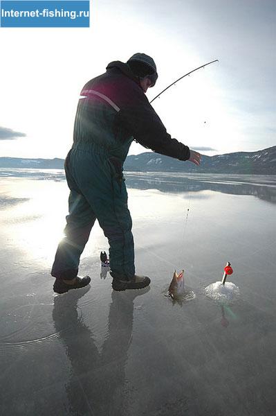 Красивая рыбалка
