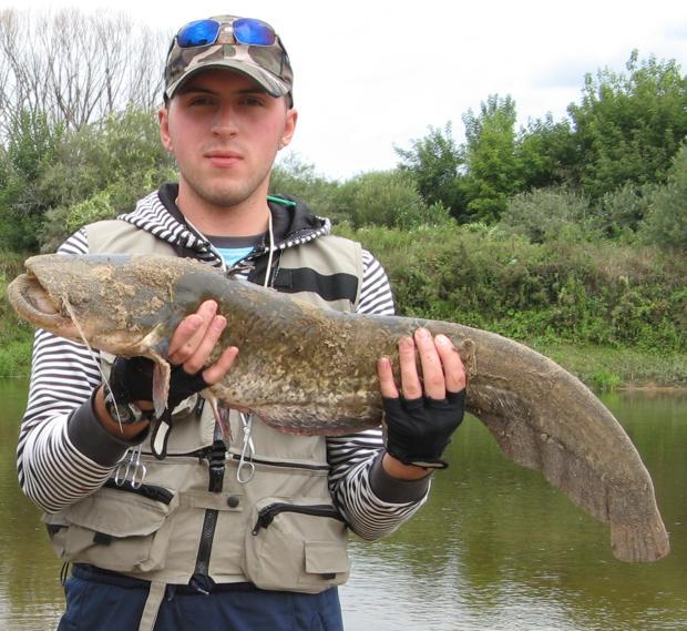 как ловить на реке дон сома