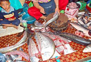 Камбоджа: сомы