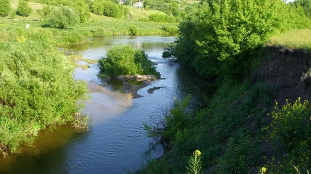 Голавль в малых реках является доминирующей рыбой