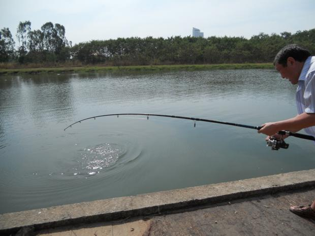 Рыба у берега