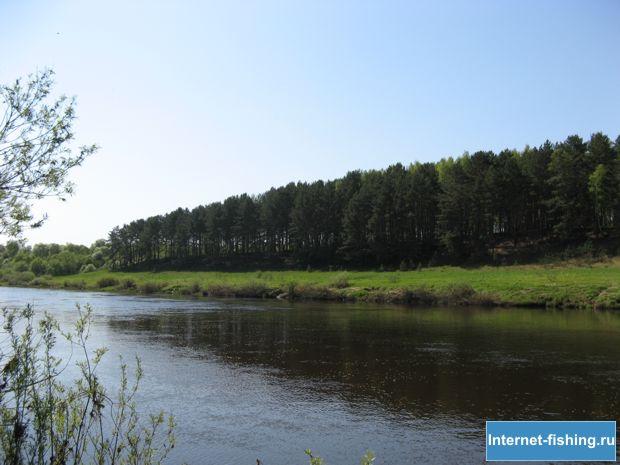 Угра в районе поселка Якшуново