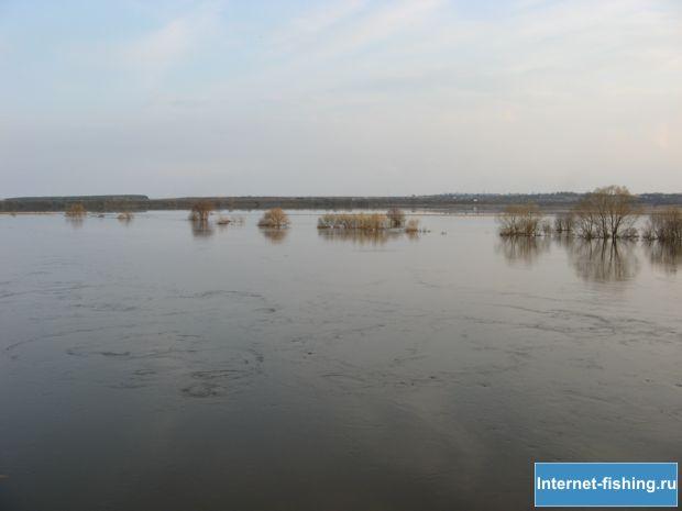 Весенний разлив Угры