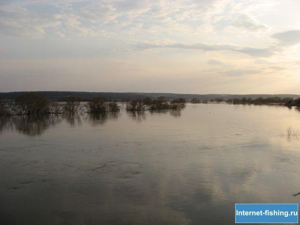 Разлив реки Угры в Калужской области
